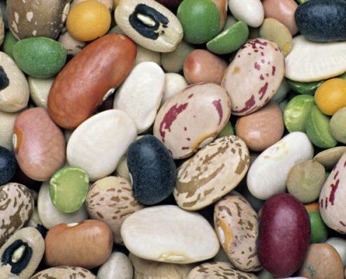 grains_color_sorting_metak