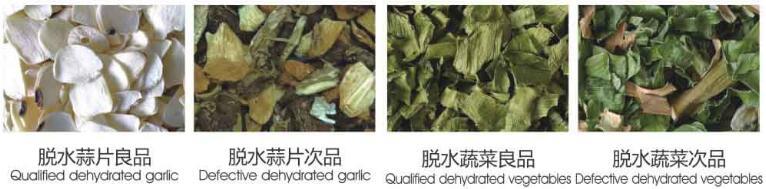 Metak_Dehydrated_Vegetables_Color_sorting_machine_01
