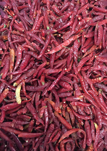 Red_Chili_Color_Sorter_Raw_Material