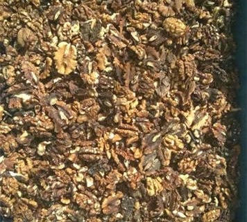 Walnut_Kernel_color_sorting_machine_raw-material