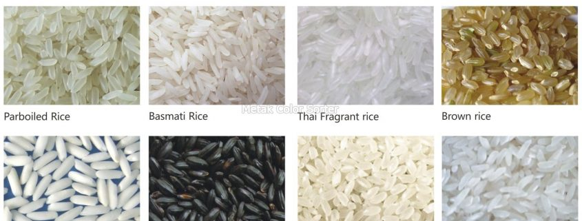 rice_color_sorter_machine_rcsc_-_metak-4