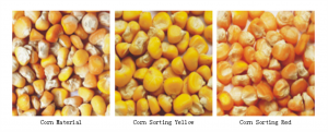 corn color sorter