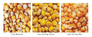 corn color sorter