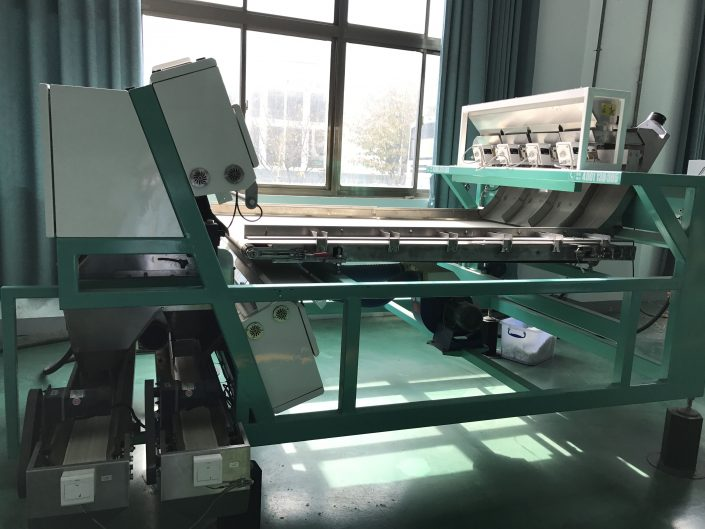 Plastic_Sorting_Machine_for_Recycling_PET_Bottle_Flakes_03